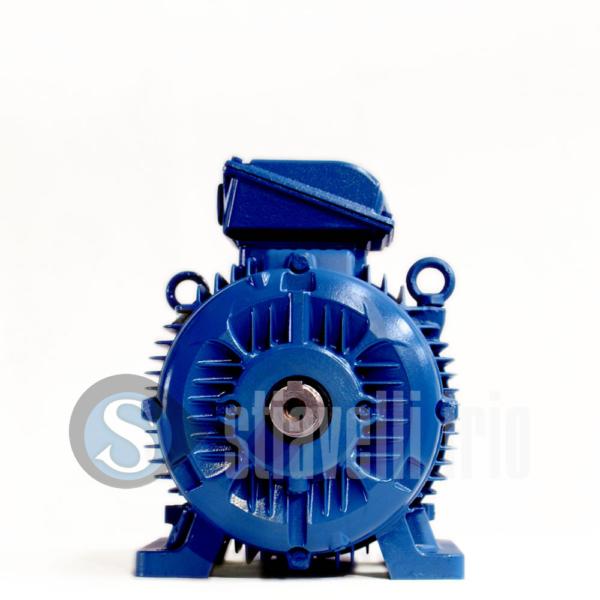 WEG Electric Motor 22 kW 2 Poles IE3