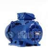 WEG Electric Motor 30 kW 2 Poles IE3