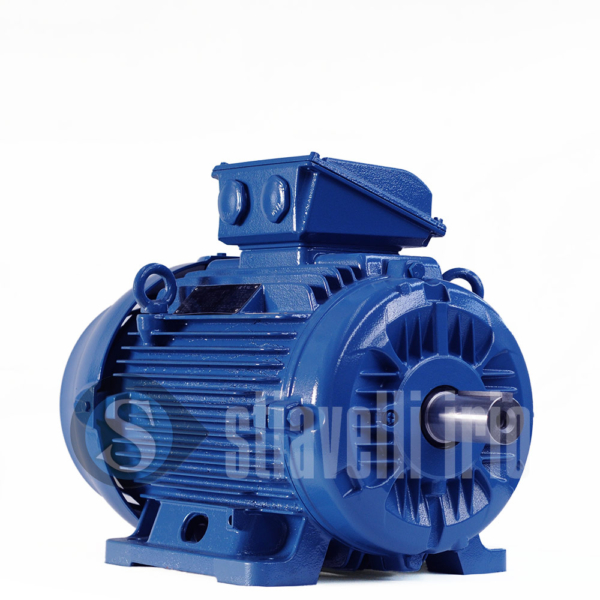 WEG Electric Motor 18,5 kW 6 Poles IE3