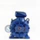 WEG Electric Motor 22 kW 6 Poles IE3