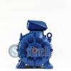 WEG Electric Motor 37 kW 2 Poles IE3