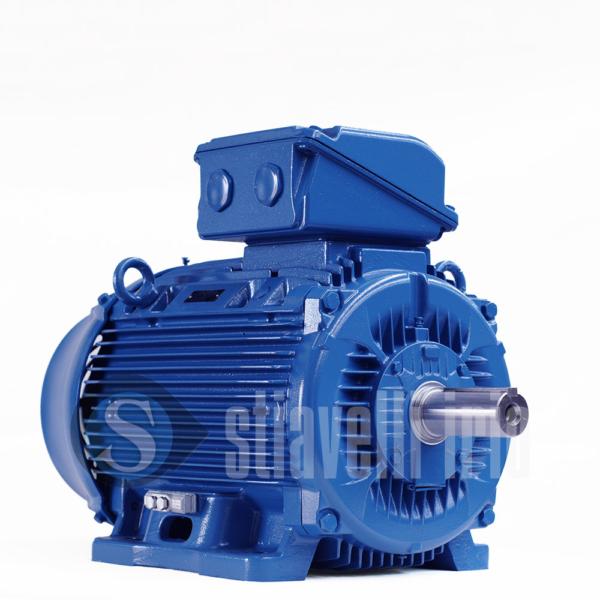 WEG Electric Motor 30 kW 6 Poles IE3