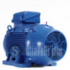 WEG Electric Motor 37 kW 6 Poles IE3