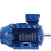 WEG Electric Motor 55 kW 2 Poles IE3