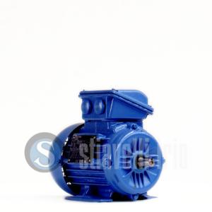 WEG Electric Motor 0,18 kW 6 Poles IE1