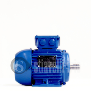 WEG Electric Motor 0,55 kW 6 Poles IE1