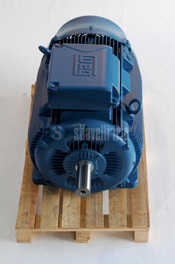 WEG Electric Motor 110 kW 6 Poles IE3