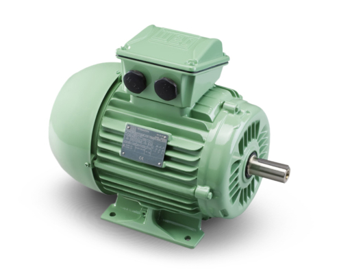W22 W4 Electric Motors