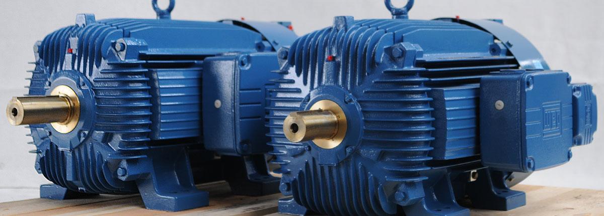 Special purpose electric motors - Stiavelli Distribuzione