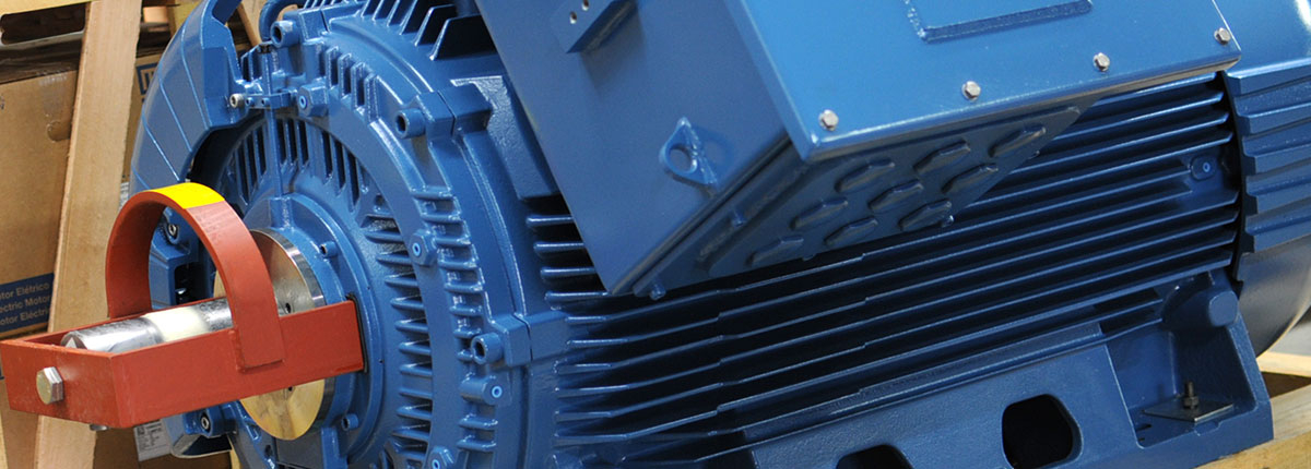 Standard Electric Motors Stiavelli Distribuzione